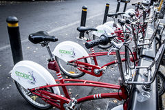 Ecobici-Stadtfahrräder in Mexiko City Lizenzfreies Stockbild