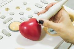 Ecocardiografía del corazón Punta de prueba y corazón del ultrasonido Cuide la ejecución de la ecocardiografía en la forma del co imagen de archivo
