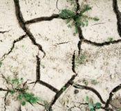 ecocatastrophe della priorità bassa Fotografia Stock
