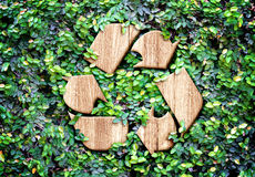 Ecoconcept: Houten textuur Kringlooppictogram op groene bladerenmuur Royalty-vrije Stock Afbeeldingen