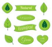 Ecoetiketten en pictogrammen Organische linten en banners Vector illustratie Stock Foto