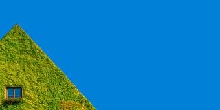 Ecofriendly hus med det ensamma fönstret i gröna murgrönaväxter på den soliga dagen och blå himmel arkivfoton