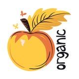 Ecológicamente productos, verduras y frutas stock de ilustración