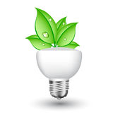 Ecol light bulb with leaves Royalty Free Stock Images