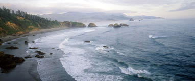 Ecola Park Stock Photography