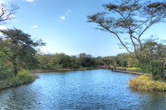Ecoland Theme Park, Jeju Island Stock Image