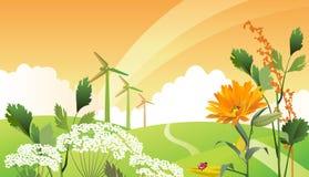 Ecolandschap van het land. Stock Foto's