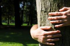 Ecología Imágenes de archivo libres de regalías