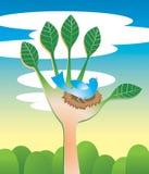 Ecología de la mano amiga Imagen de archivo libre de regalías