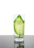 Ecología - hoja verde en el vidrio de agua. Fotos de archivo