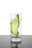 Ecología - hoja verde en el vidrio de agua. Imagen de archivo