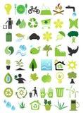 Ecologia Foto de Stock