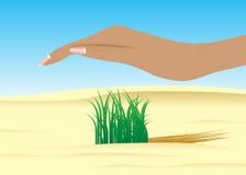 ecologia illustrazione vettoriale