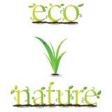 Ecologia Foto de Stock Royalty Free