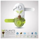 Ecologia de planta da cápsula do comprimido e ambiente Infographic Fotografia de Stock