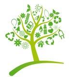 Ecologia dell'albero Immagini Stock Libere da Diritti