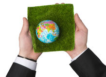 Ecologia della terra fotografia stock libera da diritti