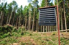 Ecologia di protezione delle foreste fotografia stock libera da diritti