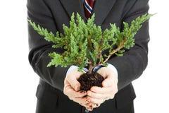 Ecologia e negócio Imagem de Stock