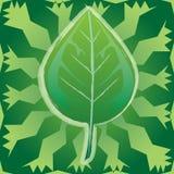 Ecologia-Foglio Immagine Stock