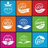 Ecologia, insieme dell'icona. Eco-icone Fotografia Stock Libera da Diritti