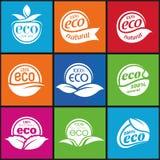 Ecologia, insieme dell'icona. Eco-icone Fotografia Stock