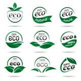 Ecologia, insieme dell'icona. Icone di Eco Immagini Stock Libere da Diritti