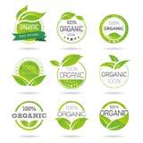Ecologia, insieme organico dell'icona. Eco-icone Immagine Stock