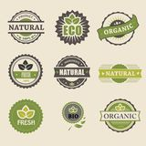 Ecologia, insieme organico dell'icona Eco-icone Fotografia Stock