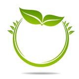 Ecologia, organica con le foglie Fotografie Stock Libere da Diritti