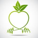 Ecologia, organica con le foglie Fotografie Stock