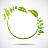Ecologia, organica con le foglie Immagini Stock Libere da Diritti
