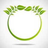Ecologia, organica con le foglie Fotografia Stock