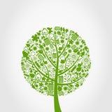 Ecologia un albero Immagine Stock