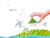 Ecologia verde dell'albero Immagini Stock Libere da Diritti