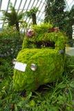 Ecologic Car Stock Images
