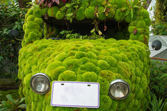 Ecologic Car Royalty Free Stock Images