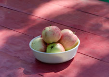 Ecologic healthy apple tree fruit red wooden table Stock Images
