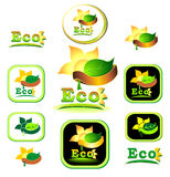 Ecologic   icon and logotype. With leaves, sun, flower, petals, rays, Earth, ribbon Royalty Free Stock Image