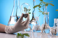 Ecologic laboratory Royalty Free Stock Image