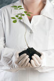 Ecologic laboratory Stock Photo