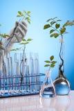 Ecologic laboratory Royalty Free Stock Photography