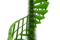 ecologic naturspiraltrappa stock illustrationer