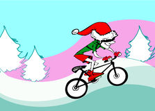 Ecologic Santa Claus riding bike Stock Photos