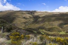 Ecologica Reserve Los Ilinizas. Ecuadorian Andes Stock Image
