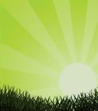 Ecological Background. Royalty Free Stock Image