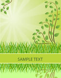 Ecological Background. Vector Illustration Royalty Free Stock Photography