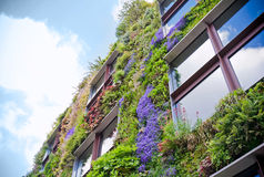 Ecological building. S facade with plans and flower on it Stock Photography