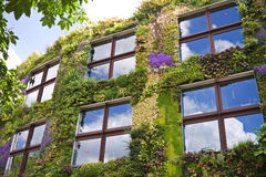 Ecological buildings facade. With plans and flower on it Royalty Free Stock Images