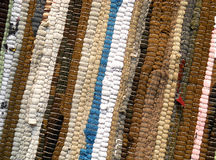 Ecological carpet Stock Photography